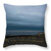 Seascape #1 Throw Pillow