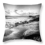 Seashells On The Seashore In Black And White Throw Pillow