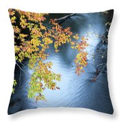Seasons Of Change Throw Pillow by Fran Riley