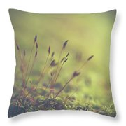 Secrets Throw Pillow by Michelle Wermuth