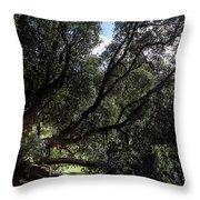 Secular Tree Throw Pillow