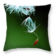 Seeking Throw Pillow by Michelle Wermuth