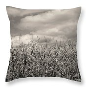 Sepia Field Of Corn Throw Pillow