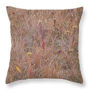 September's Hidden Treasure Throw Pillow