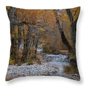 Serene Stream In Autumn Throw Pillow