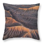 Serpentine  Throw Pillow by Dustin LeFevre