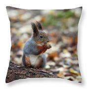 Shadow Boxing. Red Squirrel Throw Pillow