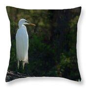 Shadow Heron Throw Pillow