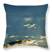 Shadows And Pigeons  Throw Pillow