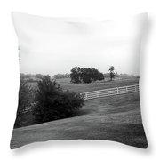 Shaker Field Throw Pillow by Mark Jordan