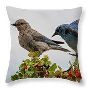 Sharing A Perch Throw Pillow