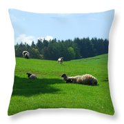 Sheep And Lambs In A Field Throw Pillow
