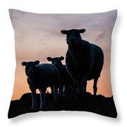 Sheep Family Throw Pillow