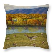 Shenandoah Valley Hawk Throw Pillow