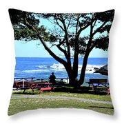 Ship Cove Park Throw Pillow