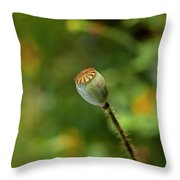 Shirley Poppy 2018-20 Throw Pillow