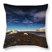 Shoreline With Driftice Throw Pillow