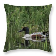 Shovel Tail In Shallows Throw Pillow