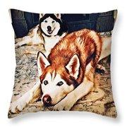 Siberian Huskies At Rest A22119 Throw Pillow by Mas Art Studio