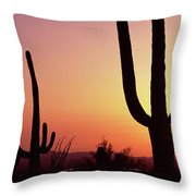 Silhouette Of Saguaro Cacti Carnegiea Throw Pillow