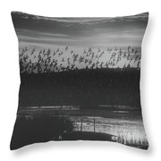 Simply Heaven Throw Pillow
