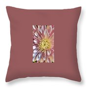 Simply Pink Throw Pillow by Cindy Greenstein