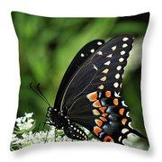 Sitting Pretty Throw Pillow by Michelle Wermuth