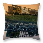 Sky Train Reflection Throw Pillow