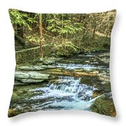 Small Waterfall In Creek And Stone Stairs Throw Pillow