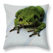 Smiling Frog Throw Pillow