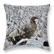 Smoke Phase Turkey 9623 Throw Pillow