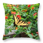 Snacking Throw Pillow