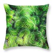 Snake Cactus Throw Pillow