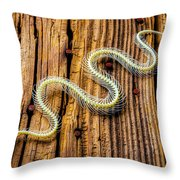 Snake Skeleton On Wooden Boards Throw Pillow
