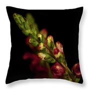 Snapdragon In Red Throw Pillow