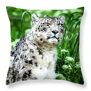 Snow Leopard, Leopard Art, Animal Decor, Nursery Decor, Game Room Decor,  Throw Pillow by David Millenheft