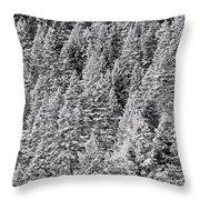 Snow On Evergreens Throw Pillow