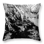 Snow Pa 10-013 Throw Pillow