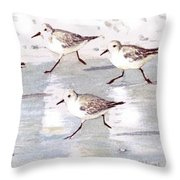 Snowy Plover Sandpipers On Siesta Key Beach, Wide-narrow Throw Pillow