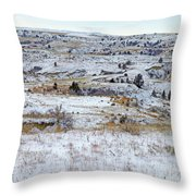 Snowy Slope County Throw Pillow