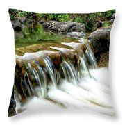Soft Water Throw Pillow