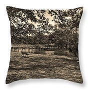 Solitude In Black And White With Sepia Tones Throw Pillow