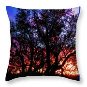 Sonoran Sunrise Ironwood Silhouette Throw Pillow