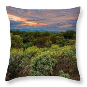Sonoran Valley Sunset V1922 Throw Pillow by Mark Myhaver
