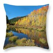 South Elbert Autumn Beauty Throw Pillow by Cascade Colors