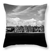 South Park View Throw Pillow