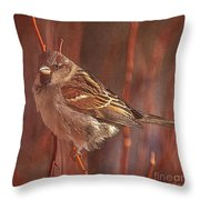 Sparrow In The Sunshine Throw Pillow