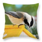 Spring Chickadee Throw Pillow