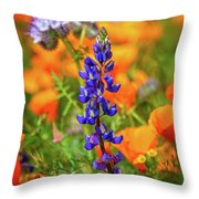 Spring Delight - Superbloom 2019 Throw Pillow