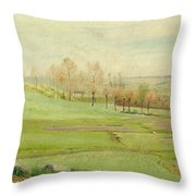 Spring Landscape With Light Green Fields Throw Pillow